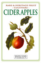 cider-apple-medium-th