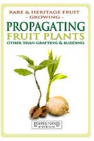 propagate-medium-th