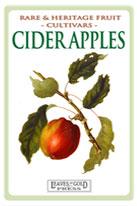 cider-apple-medium-th