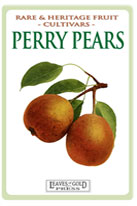 perrypears-th-medium